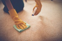 Dont make these carpet cleaning mistakes