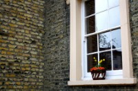 Window cleaning may help the environment