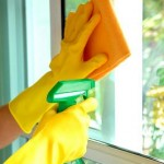 Window Cleaning Tips by Professional Window Cleaners