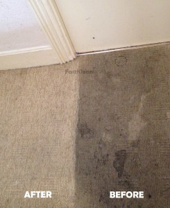 Carpet Cleaning Before After 2