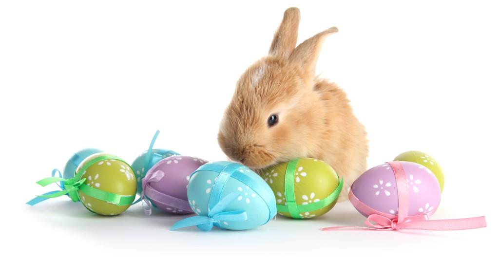 EGG-cellent Easter Deals