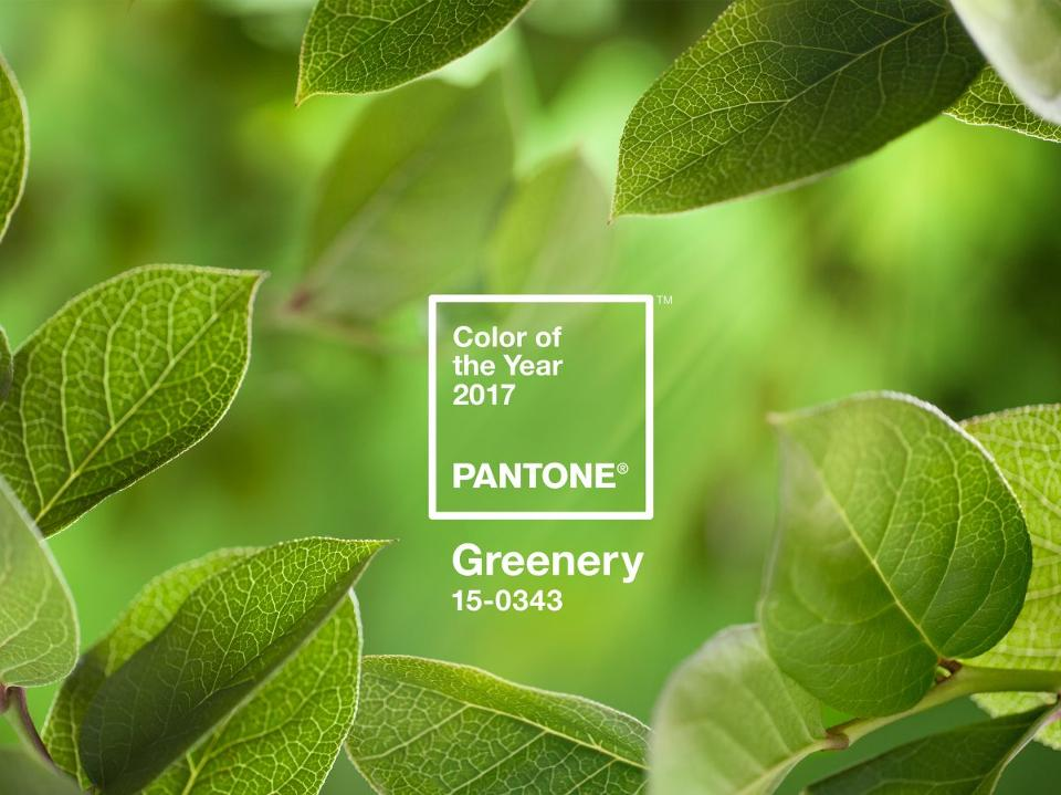 A green heaven bursting with life during Pantone's Colour of the Year 2017