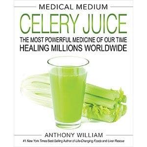 Celery Book