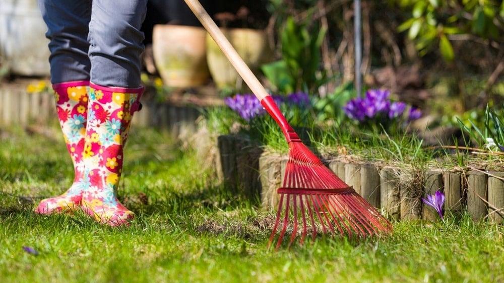 Garden Sweeping