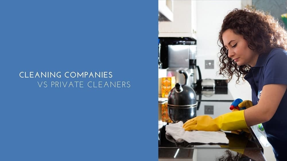 Professional Cleaning Companies Vs Private Cleaners