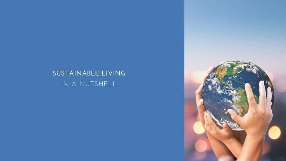 Sustainable Living In A Nutshell