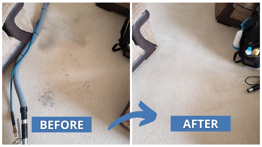 Carpet Cleaning Before And After Results