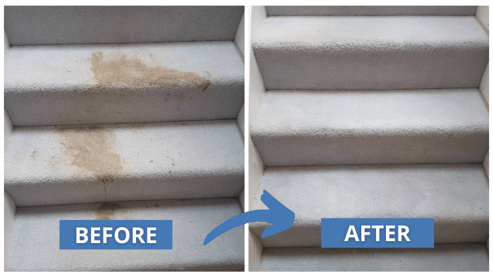 Carpet Cleaning Transformation