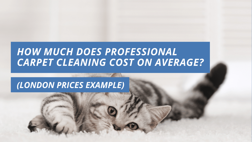How Much Does Professional Carpet Cleaning Cost On Average London Prices Example