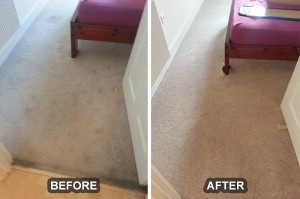 Carpet Cleaning 16