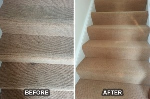 Carpet Cleaning 18