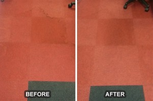 Carpet Cleaning 20
