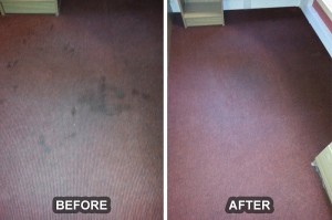 Carpet Cleaning 13